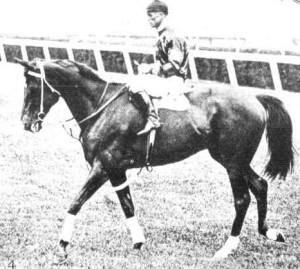 Phar Lap po vítězství v Melbourne Stakes (1931
