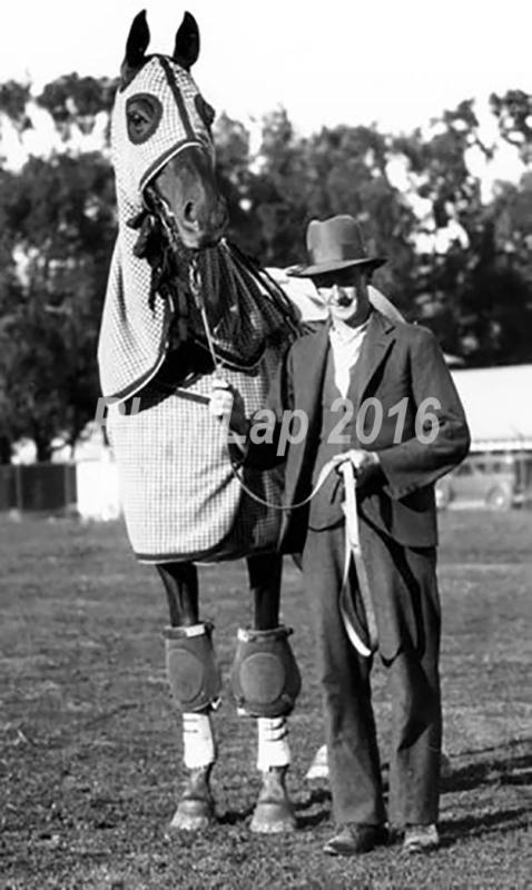Phar Lap se svým trenérem Tomem Woodcockem na dostihové dráze poblíž San Franciska, cca 25. 1. 1932