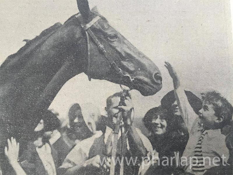 Phar Lap na závodišti v Trenthamu (Nový Zéland) obklopen davy fanoušků krátce před cestou do USA (1931).